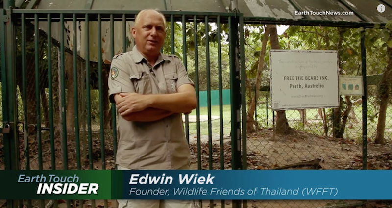 Plight of The Asian Bears An Earth Touch Film by Phuket Web Media